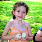 Girl holding chicks